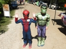 Super heroes: Spider-man & Hulk 2016